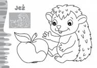 Zwierzaki maluchy - W lesie - zdjęcie 3