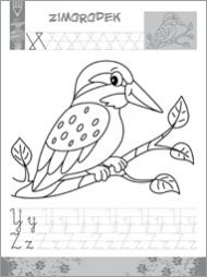 Alfabet ze zwierzętami - zdjęcie 6