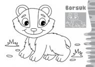 Zwierzaki maluchy - W lesie - zdjęcie 4